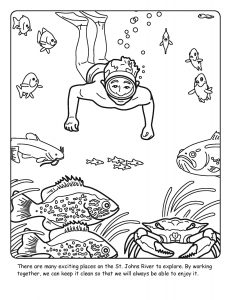 St. Johns River coloring sheet number 19