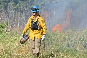 Prescribed fire reduces the chances of wildfire on district lands.
