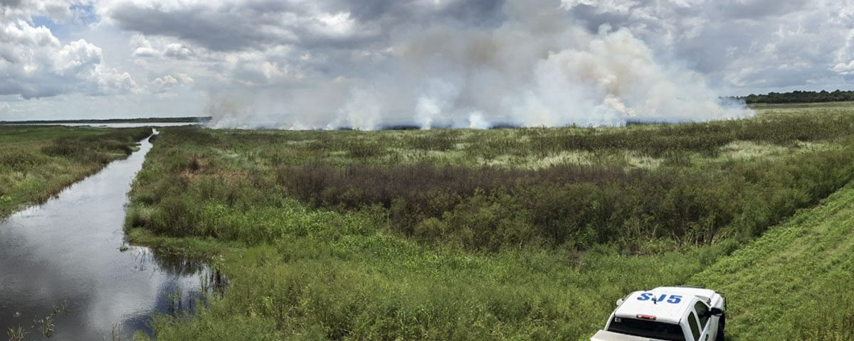 Fire burning in an open marsh