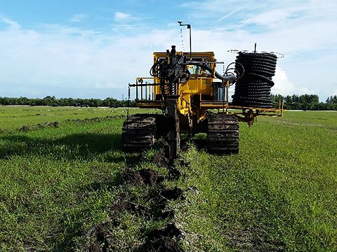 A trencher installing the irrigation drain tile at a sod farm