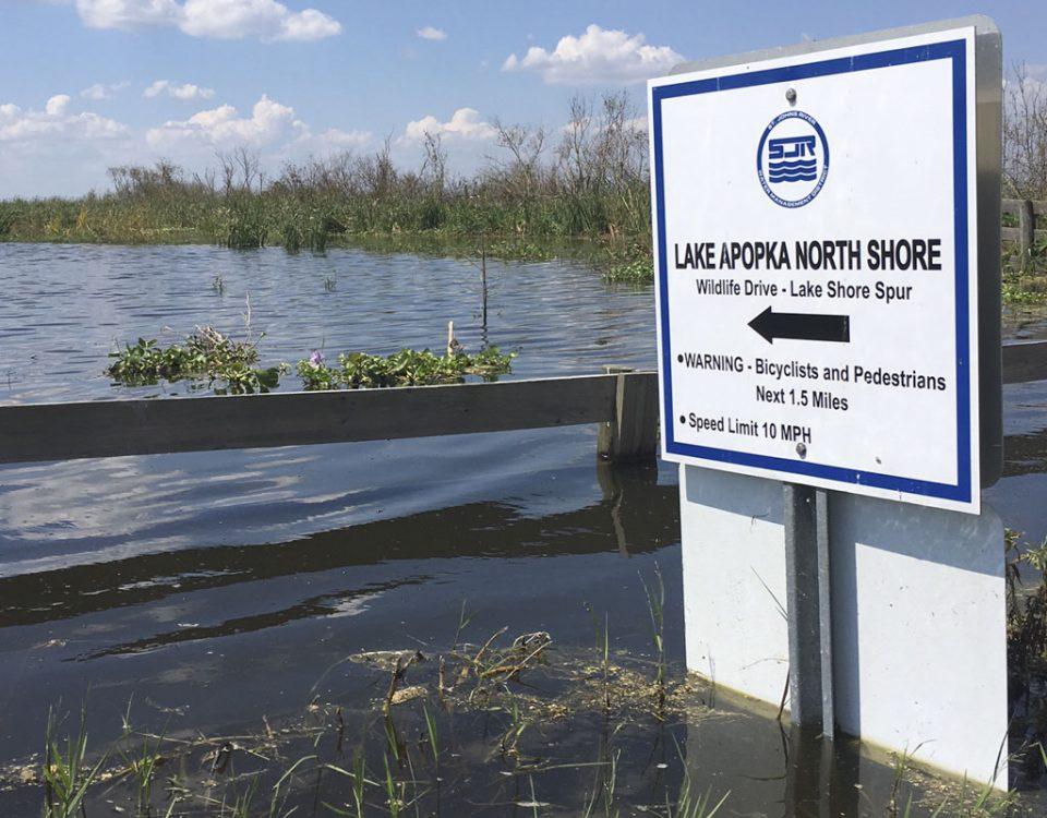 Flooding at the Lake Apopka North Shore Wildlife Drive