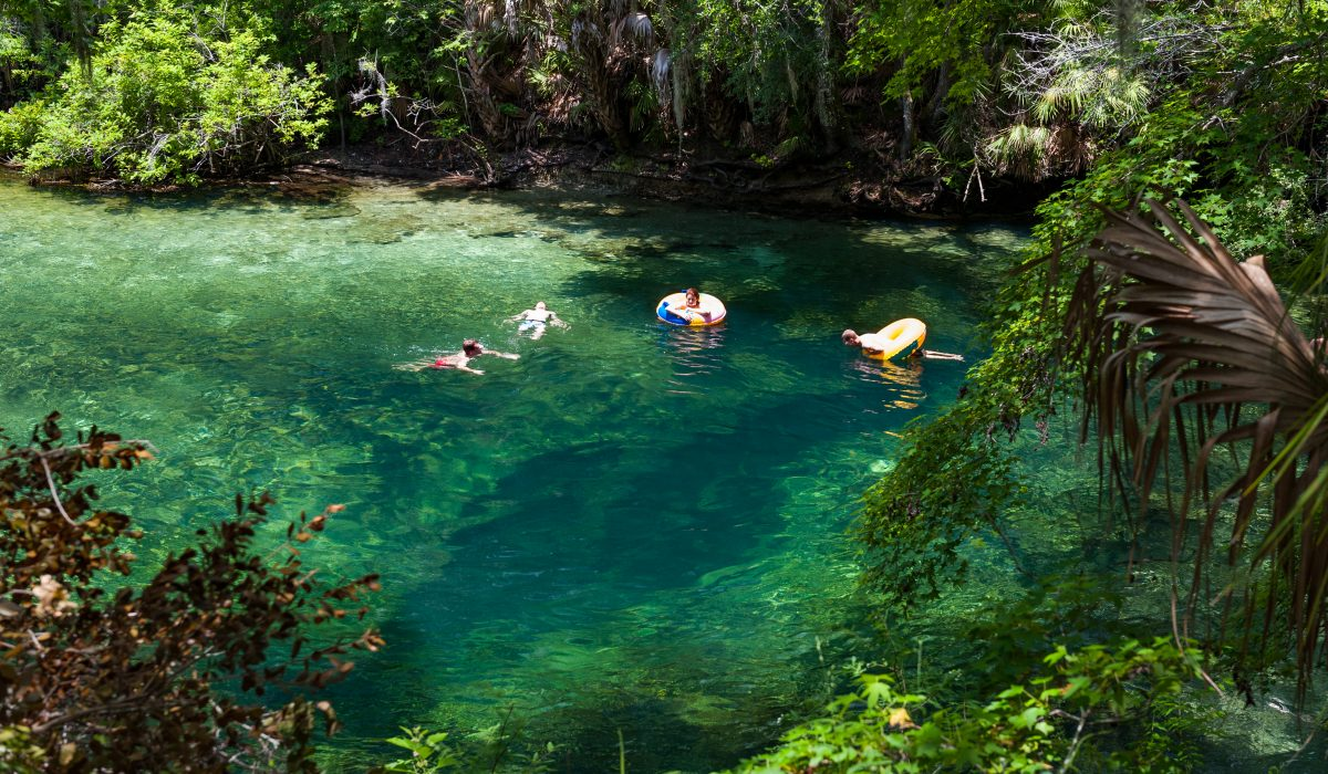 People swimming at Blue Spring
