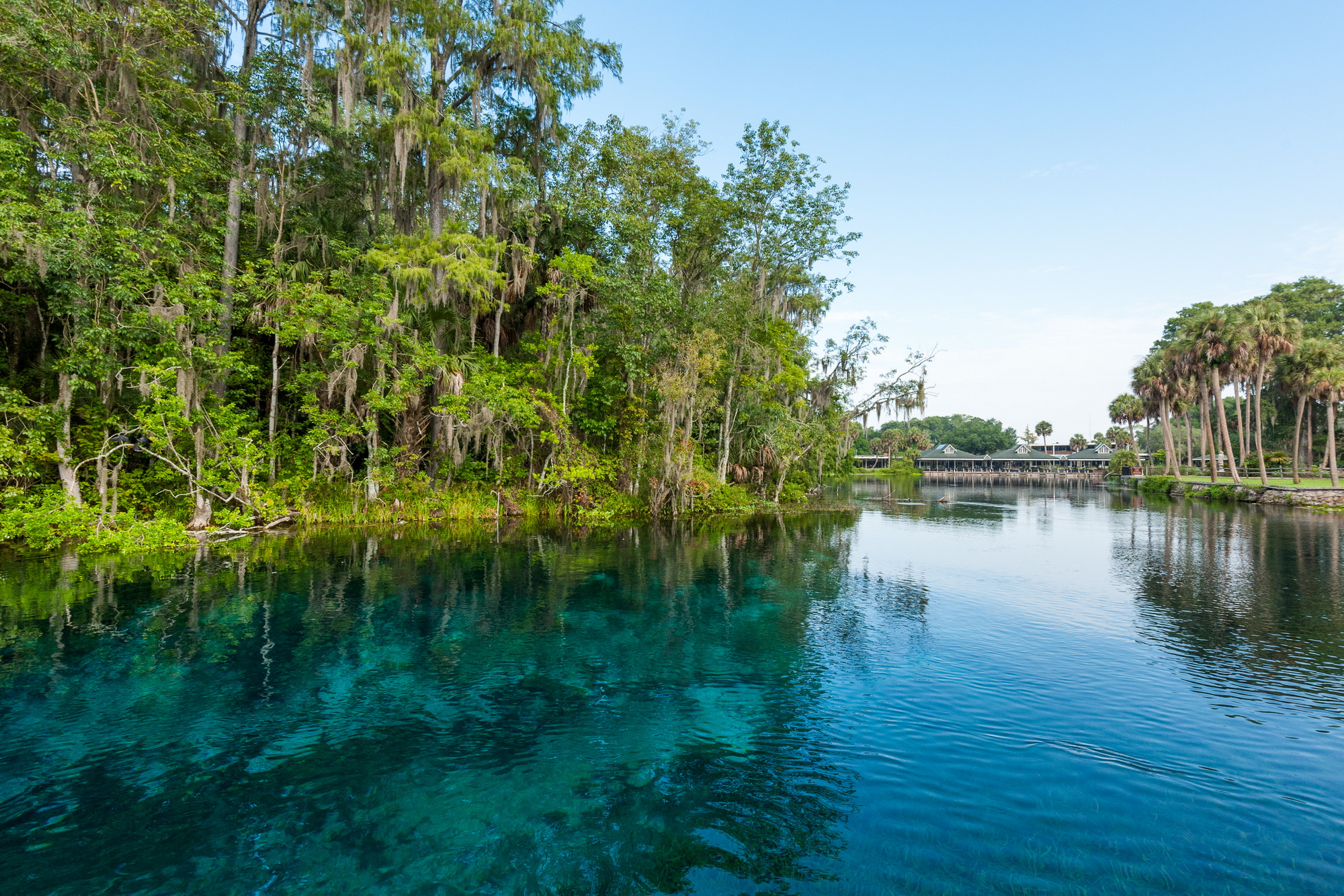 Silver Springs Group