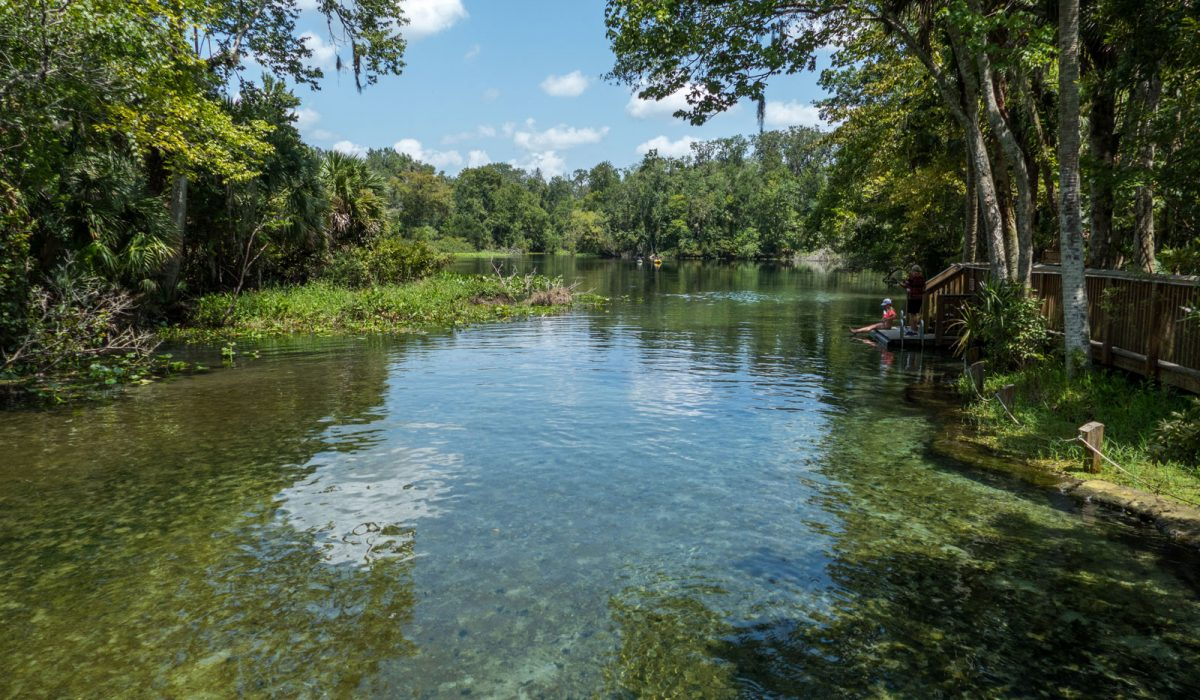 Wekiwa Springs run