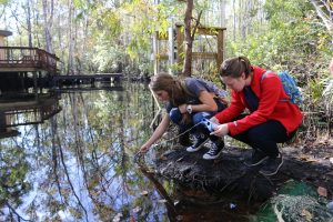 Students testing water at Julington Creek