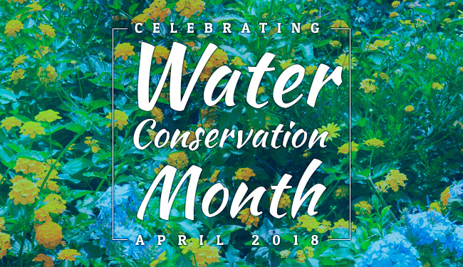 water-conservation-month-highlight