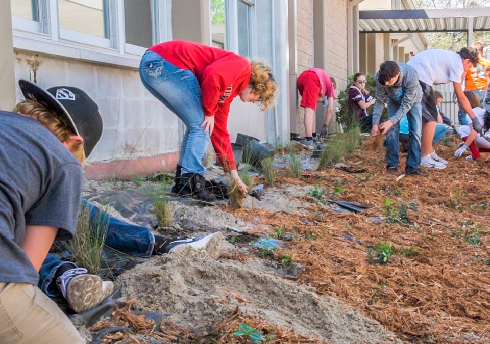 Students putting in plants next to a school as part of the blue school program