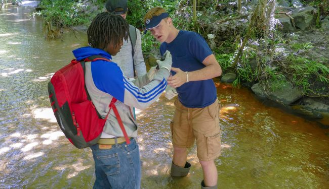 in-creek-sampling