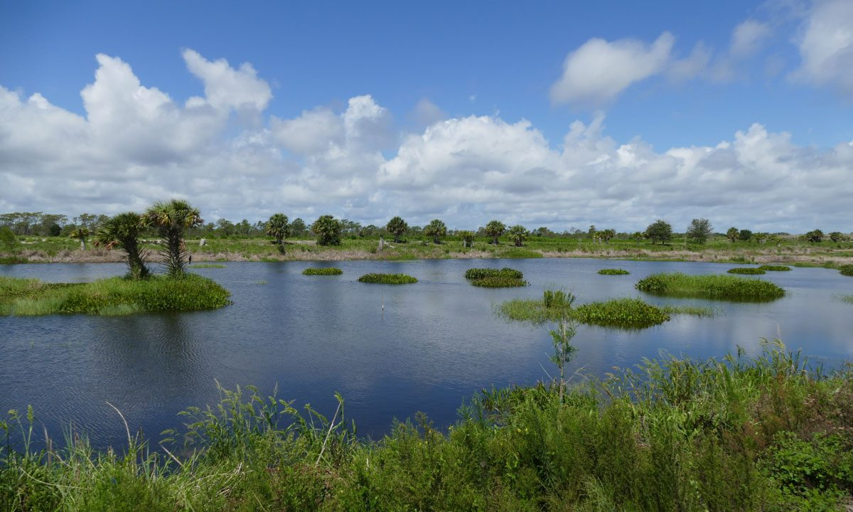 Micco Water Management Area