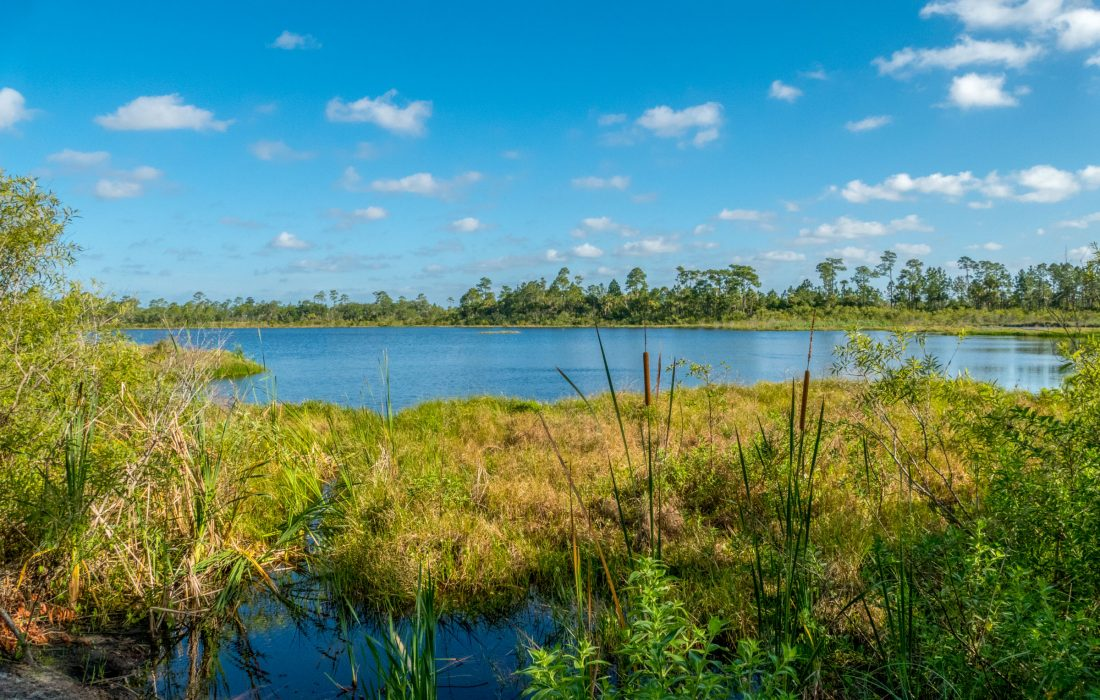 Buck Lake in Brevard County