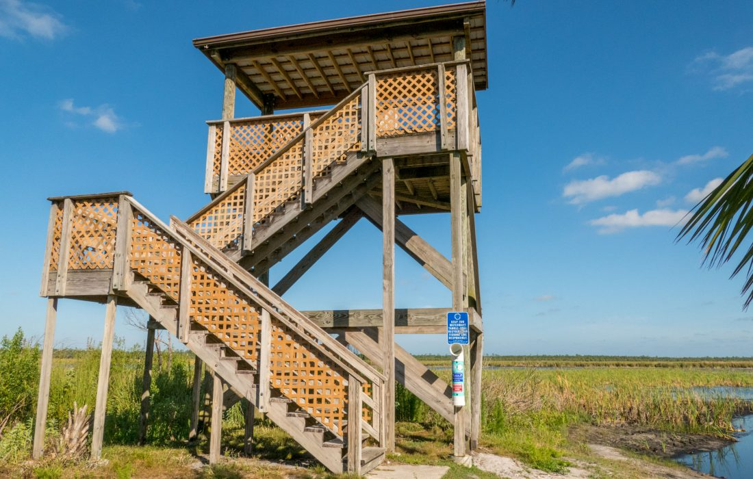 Observation tower on the edge of Buck Lake