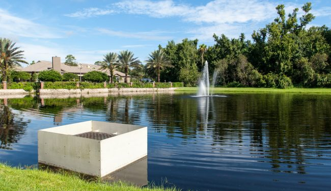 Stormwater pond at Sabal Point development in Altamonte Springs - wet detention pond without a littoral zone