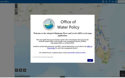 Screen capture of the FDEP Statewide Adopted MFLs website