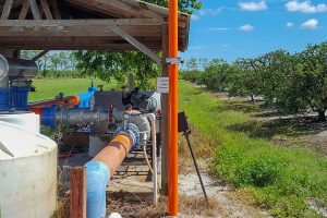 Irrigation pumphouse at a citrus grove