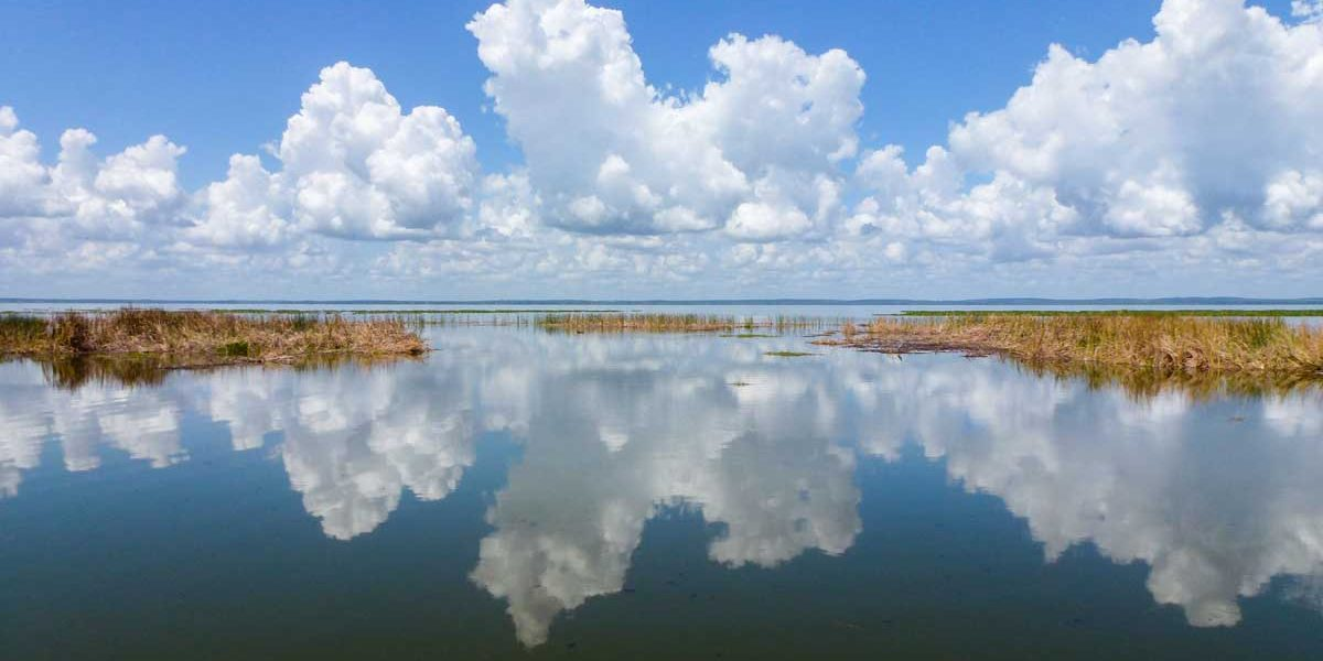 Lake Apopka is the headwaters of the Ocklawaha Chain of Lakes, located in northwest Orange and southeast Lake counties.