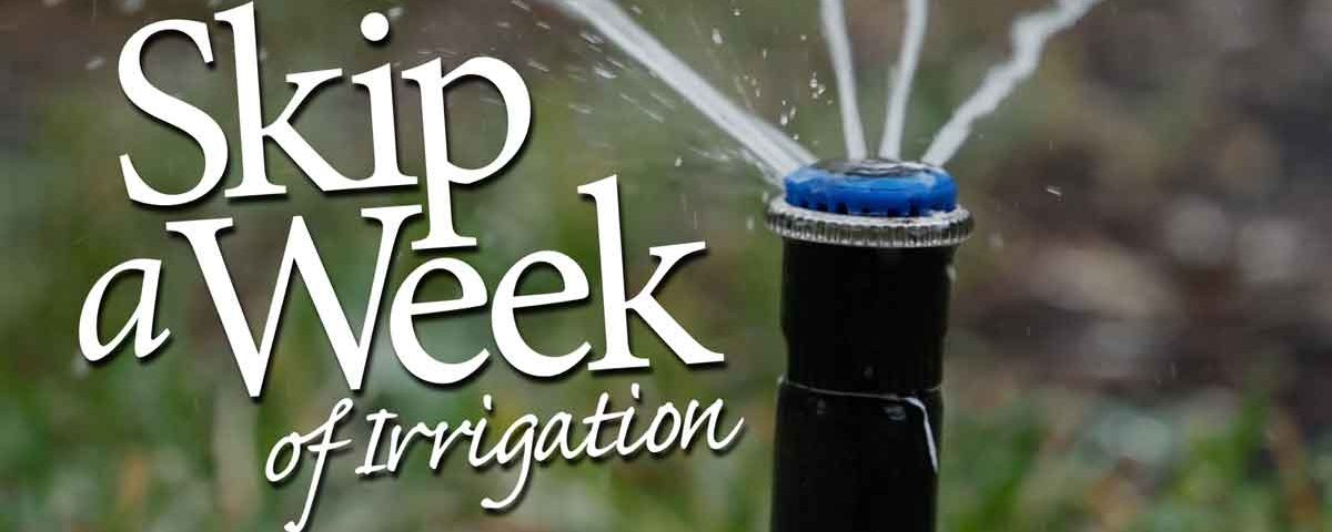 Skip a week of irrigation graphic with photo of a spray head