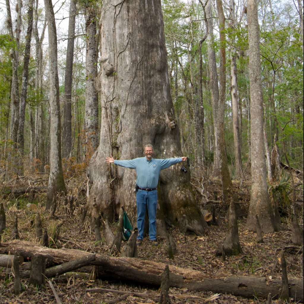 Nels Parson in front of large cypress tree at Rice Creek Conservation Area
