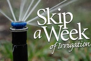 Skip a Week of Irrigation