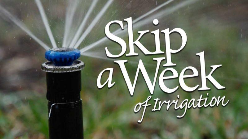 Skip a Week logo