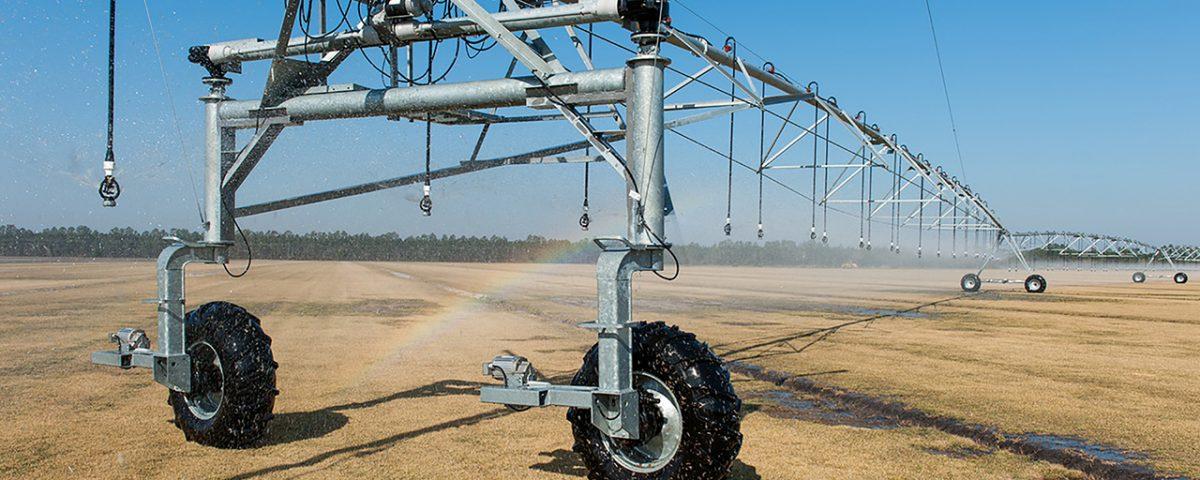 Pivor irrigation system watering a sod farm