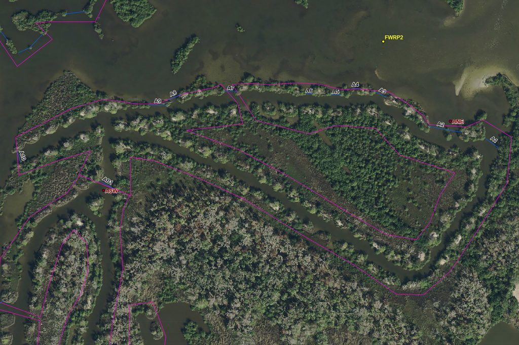 Aerial image of a salt marsh with locator markings