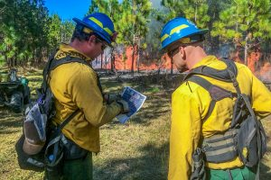 District staff discussing a prescribed fire