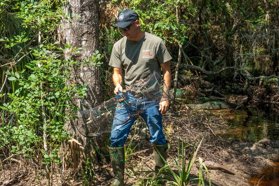 Jeremy Olson removes a trap from a creek to see what creatures live in the waterway