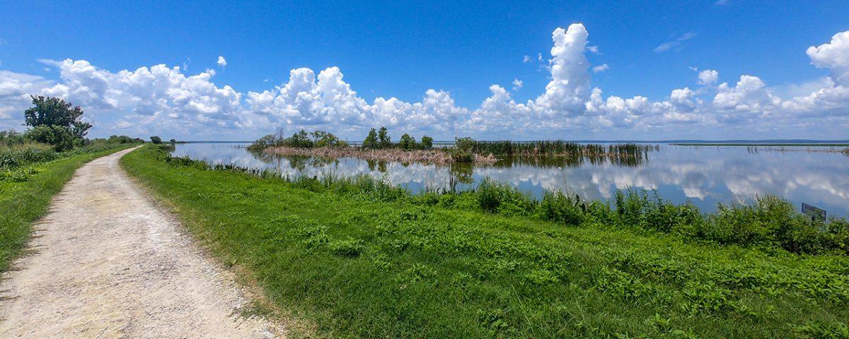 Small unpaved trail on levee next to Lake Apopka