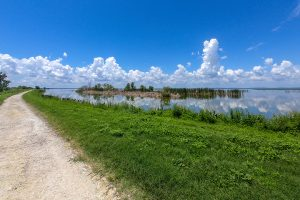 Small unpaved trail on levee next to Lake Apopka