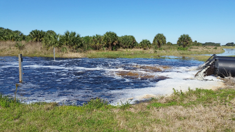 Water flowing from black pipes into the Sawgrass Lakes WMA