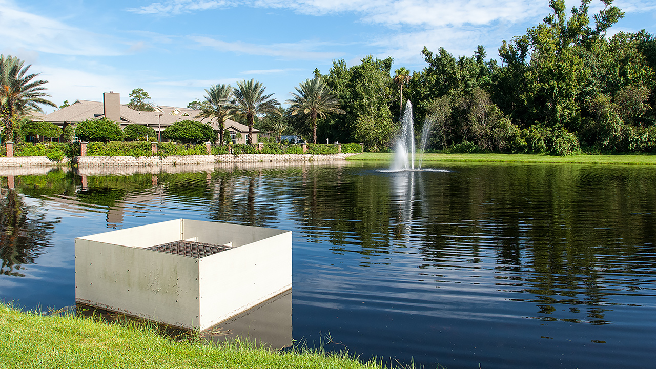 Stormwater pond with a fountain in the middle and houses behind it
