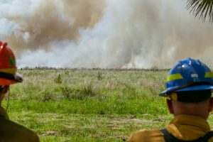 Two staff looking at a prescribed fire