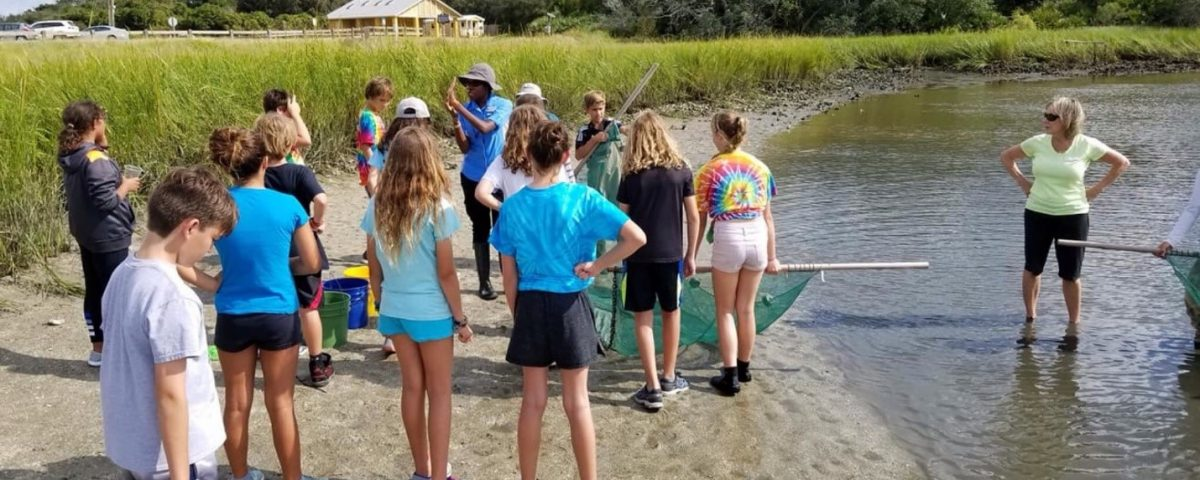 Students at a salt marsh learnign about seining
