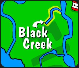 Illustration of Black Creek