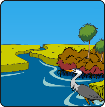 Illustration of the Indian River Lagoon