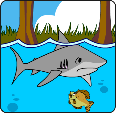 Illustration of a shark below the water