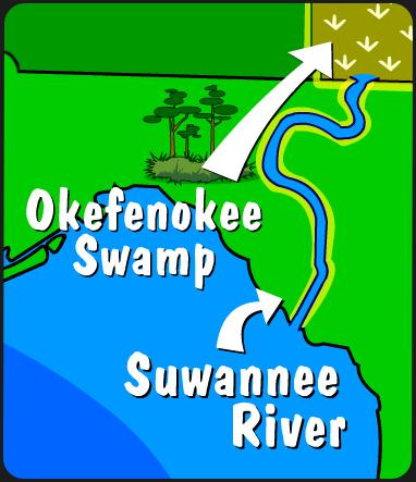 Illustration of the Suwannee system