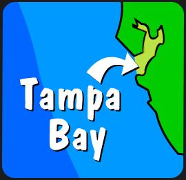 Illustration of Tampa Bay