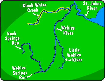 Illustration of Wekiva River