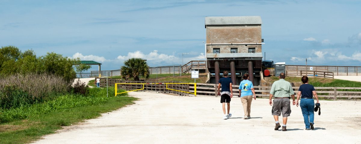 People walking toward Lake Apopka Wildlife Drive