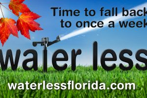 Time to fall back to one a week. Water less. waterlesflorida.com