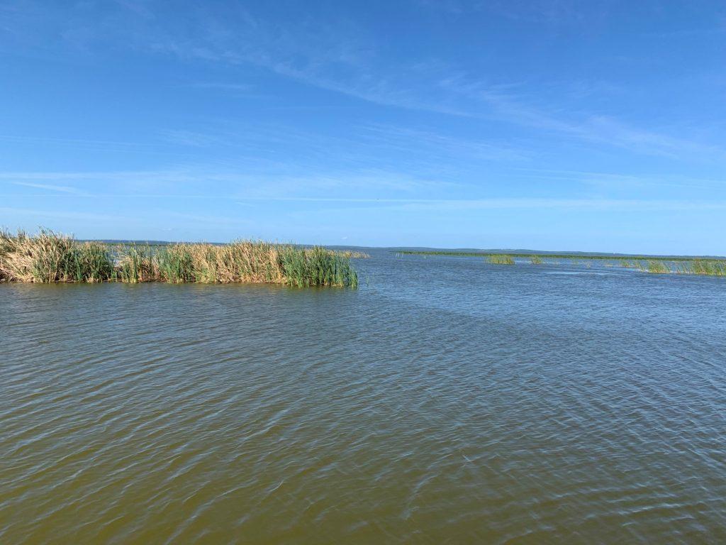 Calm waters on Lake Apopka
