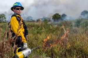 Disrict staff conducting a prescribed fire