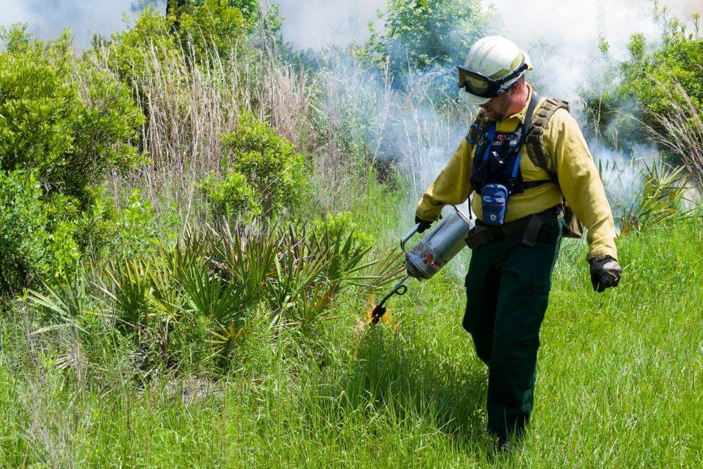 Steve Miller - SJRWMD staff conducting prescribed burn at Dunns Creek Conservation Area