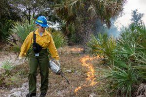 Prescribed fire at Fort Drum Marsh
