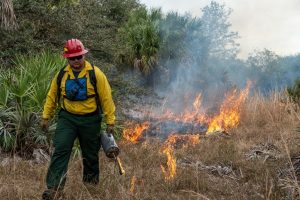 Fort Drum prescribed fire