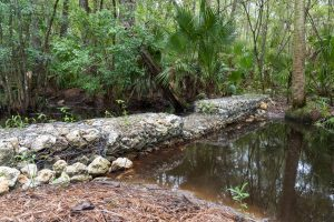 Silver Springs riprap project
