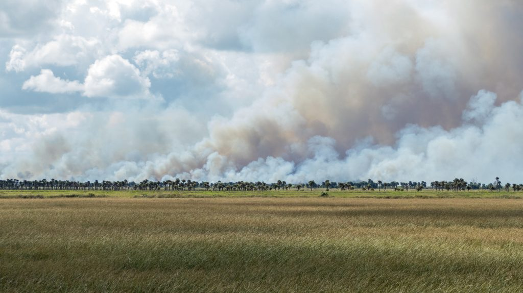 Prescribed fire in the Three Forks Conservation Area
