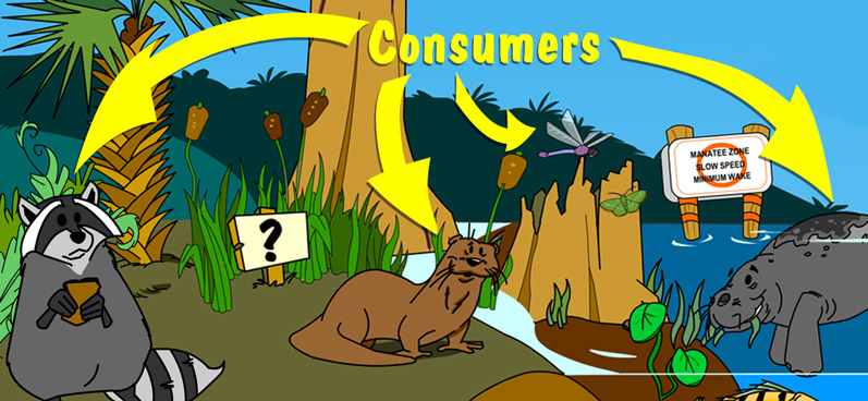 Illustration of consumers