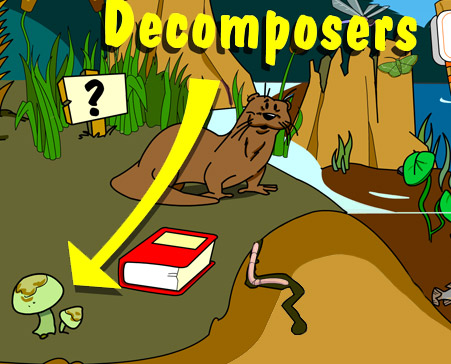 Illustration of decomposers